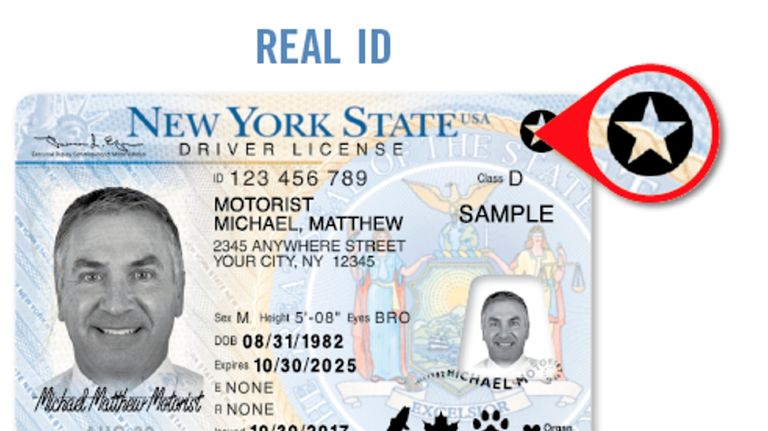 A sample of a REAL ID NYS driver's license